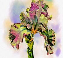 Iris by Wib Dawson