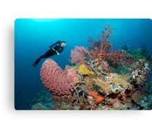 The Perfect Reef Canvas Print
