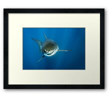Smiley Framed Print