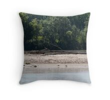 river landscape Throw Pillow