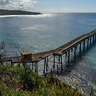 Catherine Hill Bay Jetty by Werner Padarin