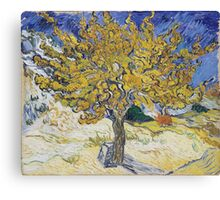 Vincent Van Gogh - Mulberry Tree, 1889 Canvas Print