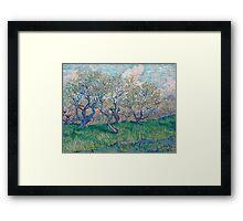 Vincent Van Gogh - Orchard In Blossom, 1888 01 Framed Print