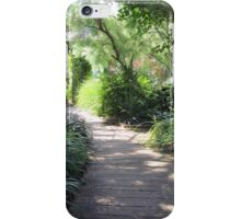 Walk into a a Painting iPhone Case/Skin