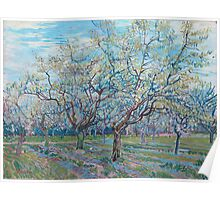 Vincent Van Gogh - Orchard With Blossoming Plum Trees, 1888 Poster