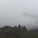 Flying Free Over The Old Man Of Storr, Skye, Scotland by MagsWilliamson