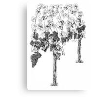 Di's vine Canvas Print