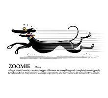 Greyhound Glossary: Zoomie Photographic Print