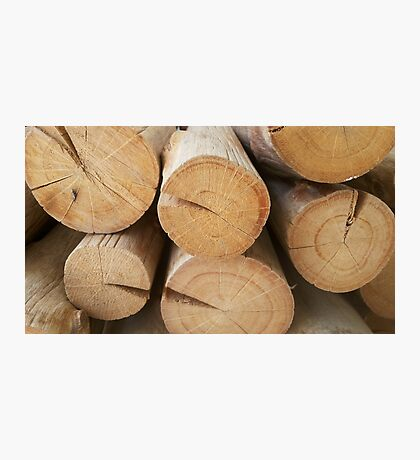 wooden layer Photographic Print