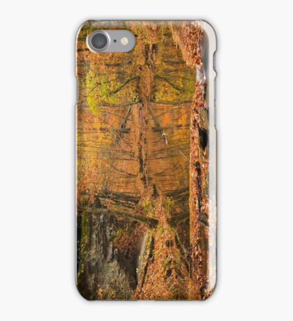 Shallow Reflections iPhone Case/Skin