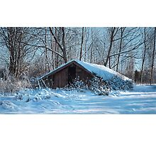 Rootcellar Photographic Print