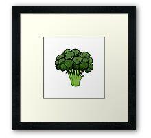 Broccoli  Framed Print