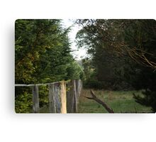 Busch Fence Canvas Print