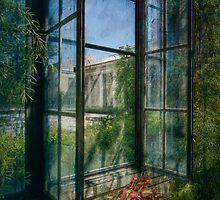 A Dream Appears by Marilyn Cornwell