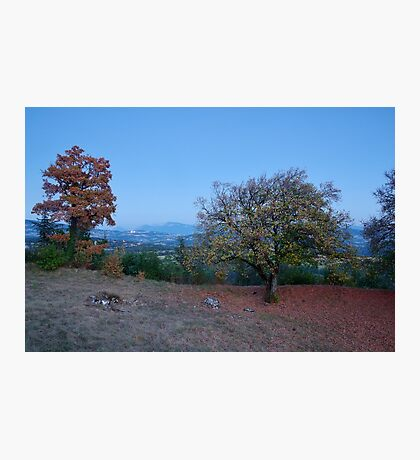 Blue hour on the french countryside Photographic Print