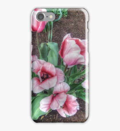 Pretty Spring Tulips iPhone Case/Skin