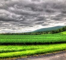 Valley Crops by James Brotherton