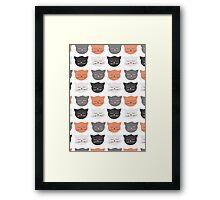 Cat Madness Framed Print