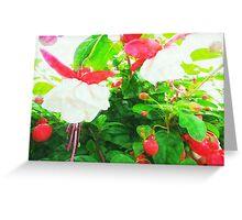 Red & White Fuschia Greeting Card