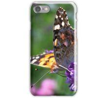 Vanessa Cardui iPhone Case/Skin