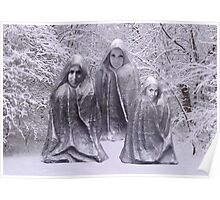 Statues in Winter Poster