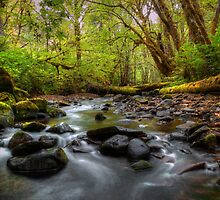 That Time Of Year by Charles & Patricia   Harkins ~ Picture Oregon
