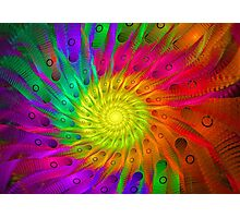 Follow the Rainbow Photographic Print