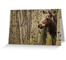 Elliott the Curious Moose Greeting Card