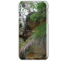Kuringai National Park, NSW, Australia iPhone Case/Skin