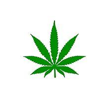 Marijuana Leaf Photographic Print