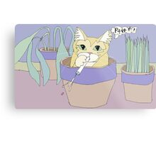 Cat And Spitball Metal Print