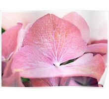Pink Flowers are Beautiful [part 3] Poster