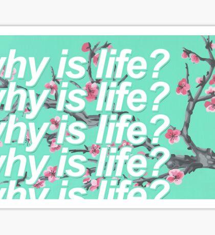 why is life? x Arizona Sticker