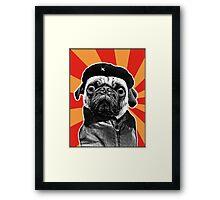 che pug Framed Print
