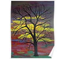 Tall tree Poster