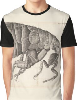 Micrographia insect Graphic T-Shirt