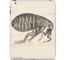 Micrographia insect iPad Case/Skin