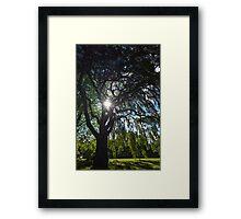 Weeping Sun Framed Print