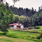 Horse barn at the Biltmore by venny