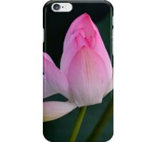 The messenger of Buddha   iPhone Case/Skin