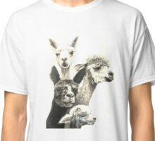Alpacas Are Awesome! Classic T-Shirt
