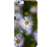 White Aster Flowers iPhone Case/Skin
