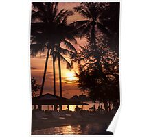 Sunset at a coastline with palm trees Poster