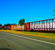 Cargo Train by organicmindset