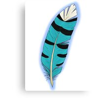 Jay's Wing feather Canvas Print