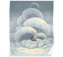 Arctic Fox Huddle Poster