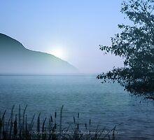Cool Rising Sun by Stephanie Rachel Seely
