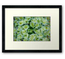 Playful Petunias  Framed Print