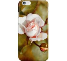 Antique Rose iPhone Case/Skin