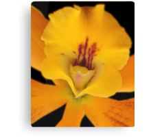 50 Shades of Summer - Orchid Alien Discovery Canvas Print